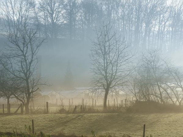 foggy serres morning