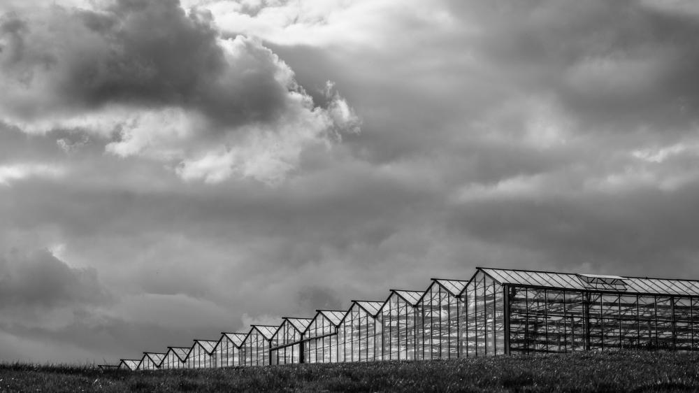 glass houses belgium