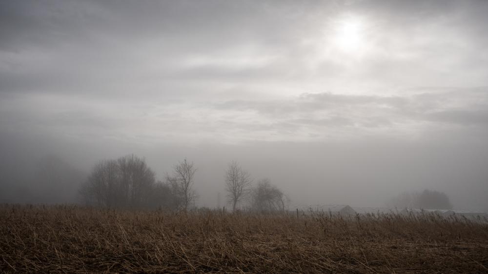 belgium foggy day