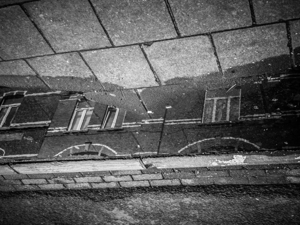 leuven reflection puddle