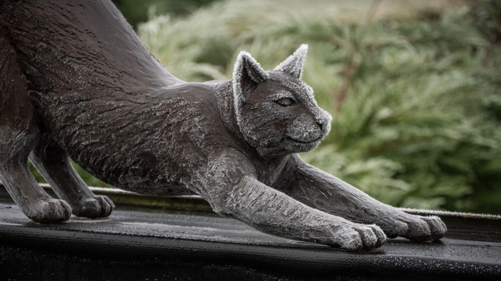 frosty cat sculpture