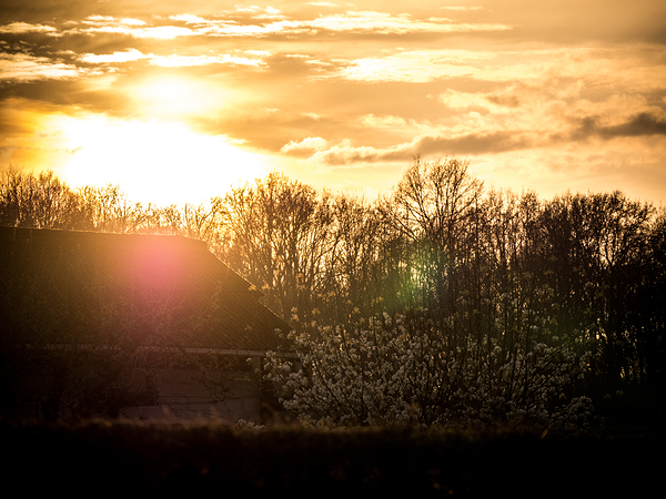 sunset springtime