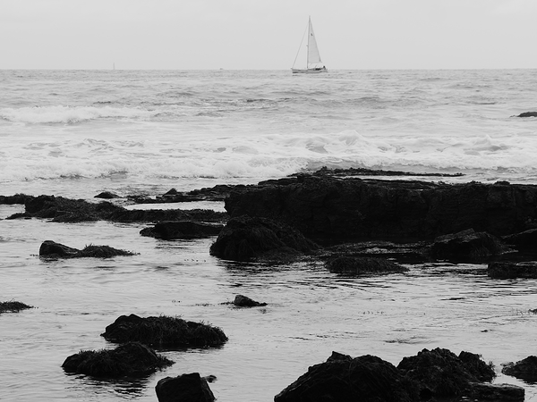 sailboat at crystal cove state park