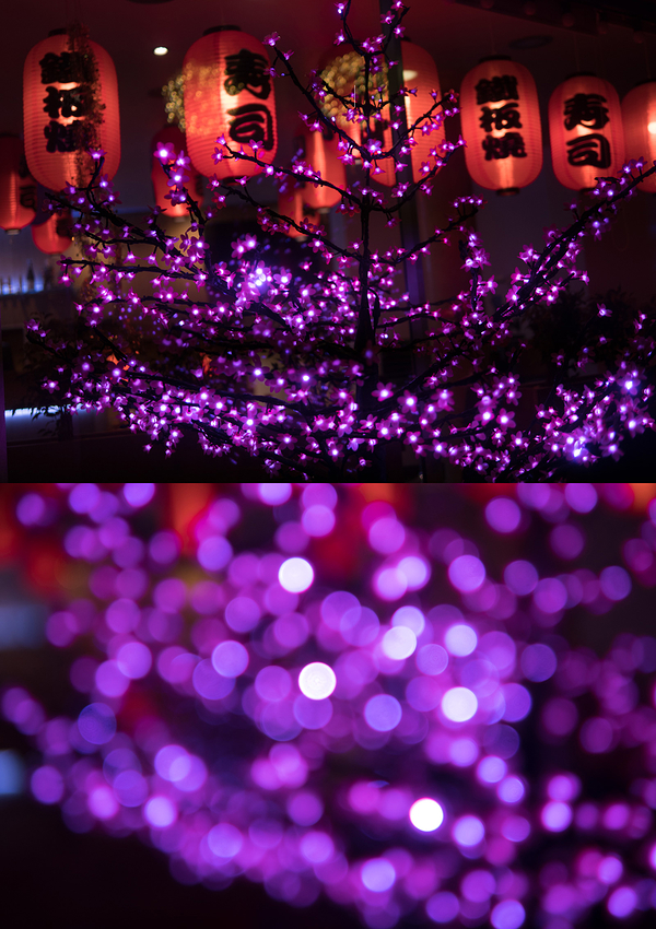japanese lanterns and christmas lights