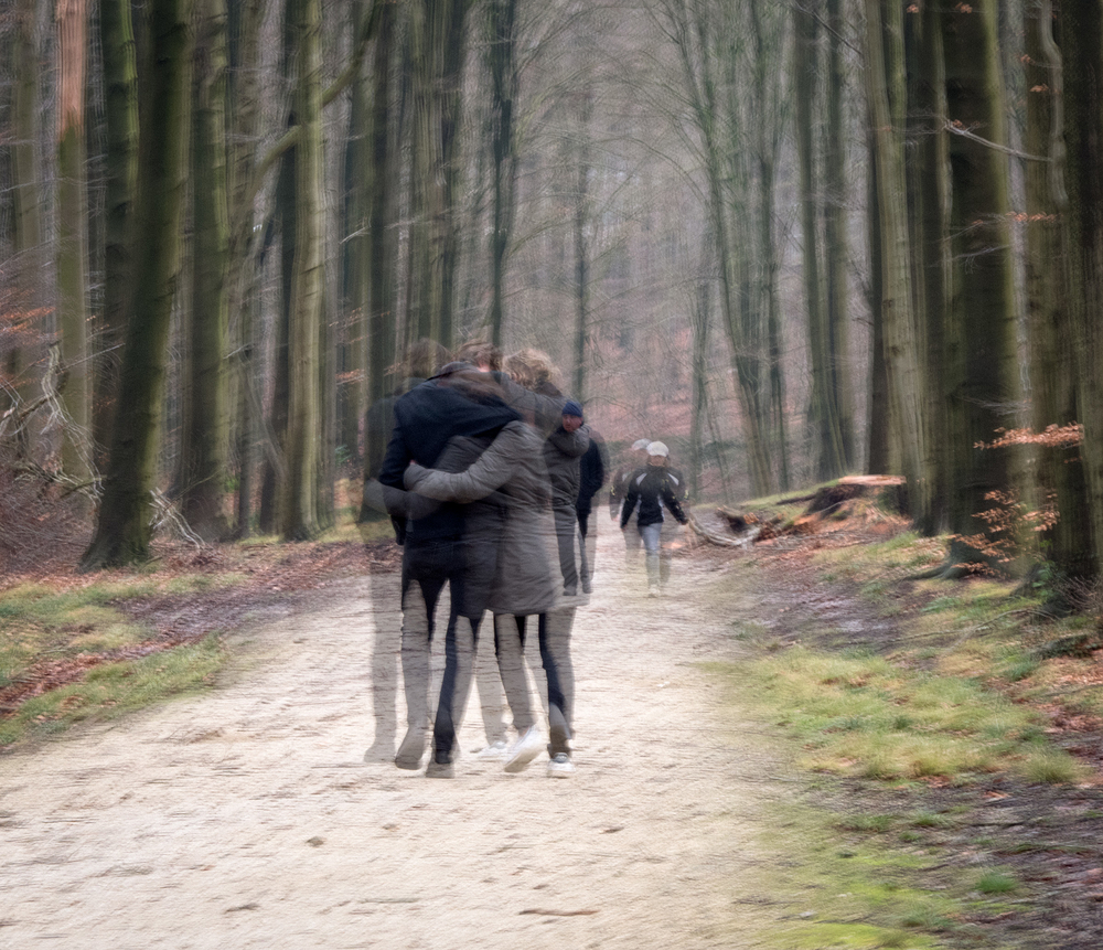 loves in the forest and friends