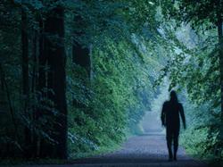 forest walker