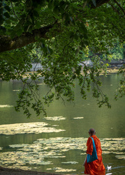monk feeding ducks in Belgium
