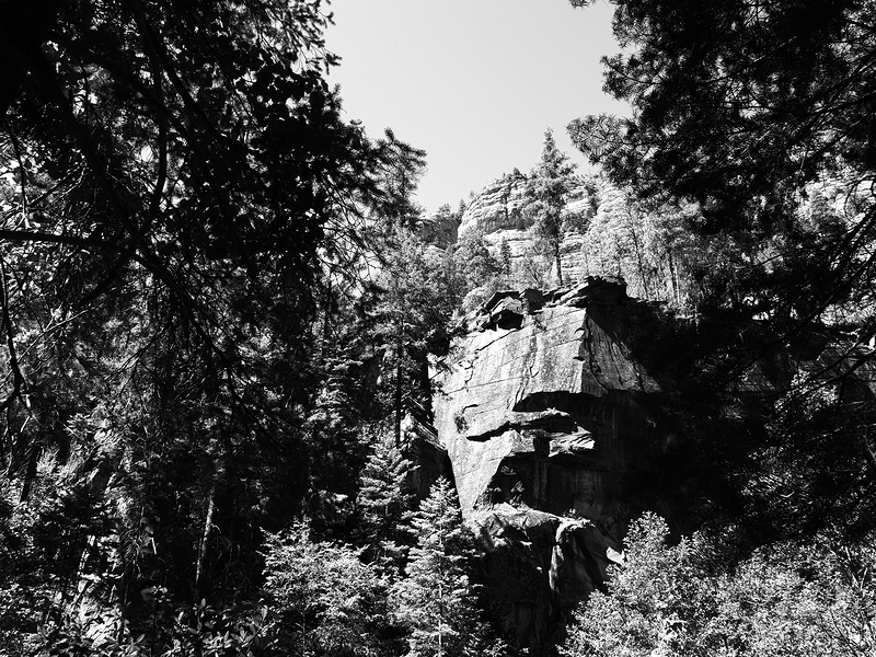 I was hiking West Fork Trail in Arizona and taking some black and white photos in camera.