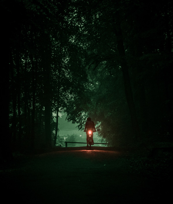forest night ride