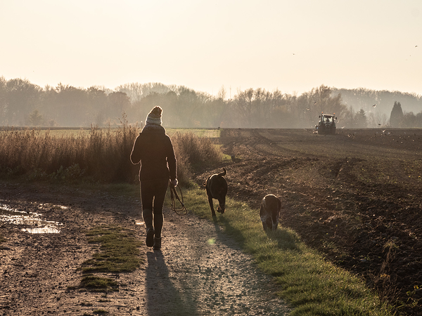 cool autumn walk in rural Belgium