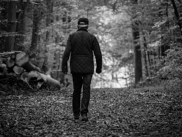 man walking in the belgian forest