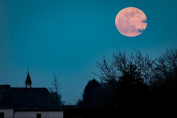 lunar observer