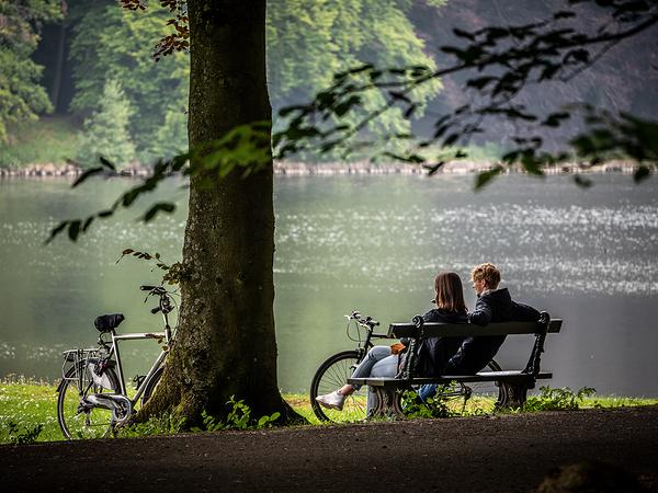 tervuren park picnic