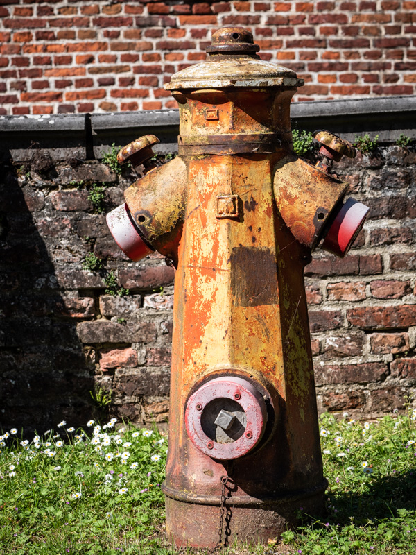 fire hydrant pareidolia
