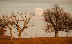 oklahoma moon