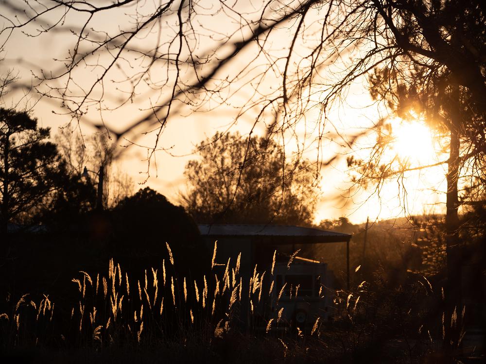 sunrise back light