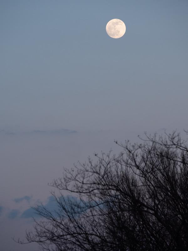 lunar lighting