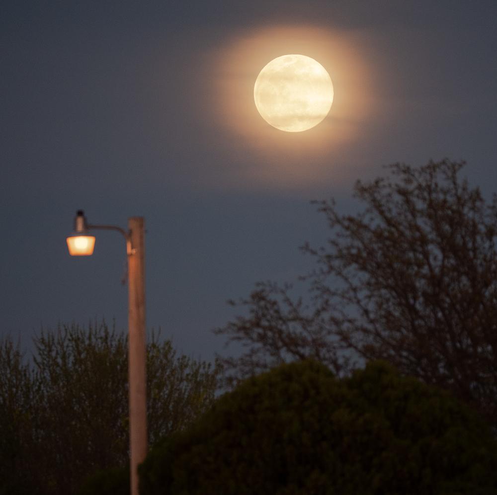 moon + light