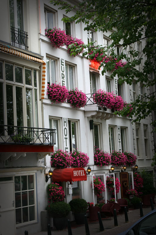 hotel amsterdam pink flowers