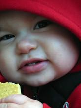 Solen eating cracker