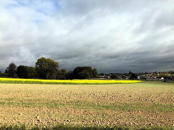 A Belgium sky in Autumn