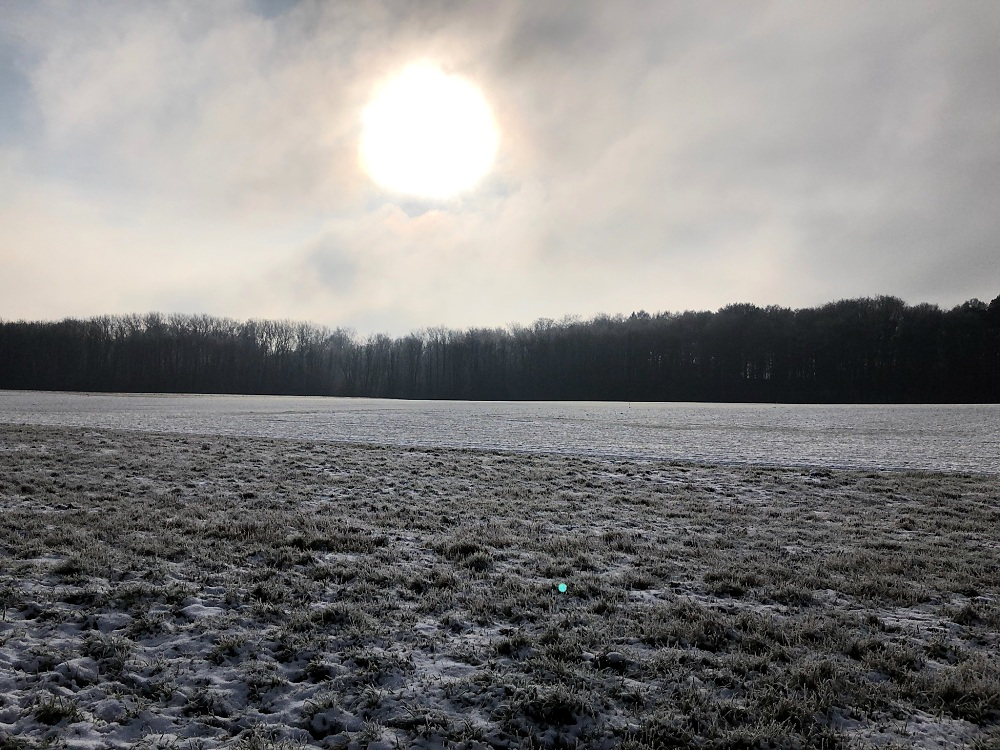 frosty field with big sun