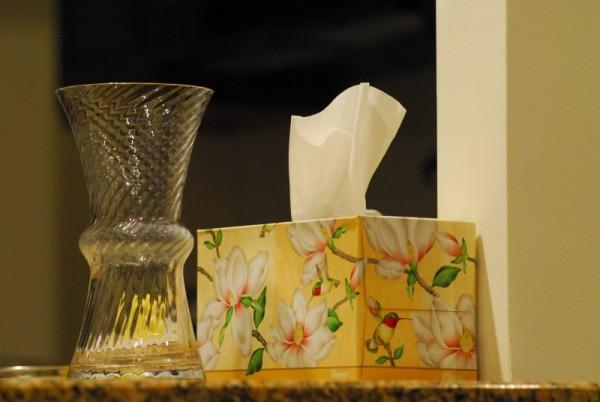 Vase & Tissues