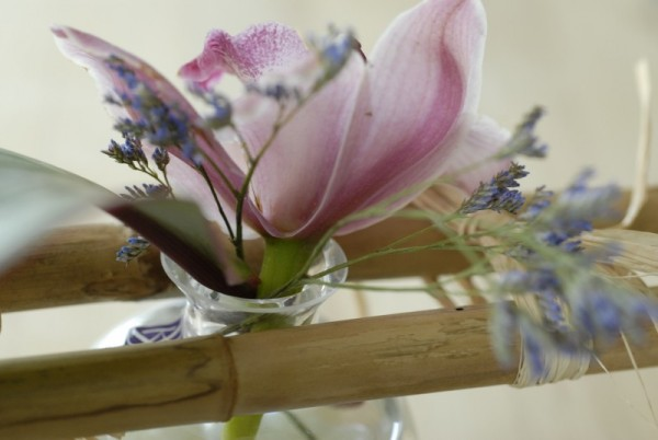 Orchid, glass and bamboo