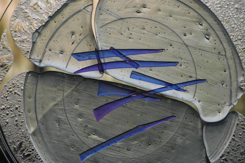 Carlas's Glass Sculpture