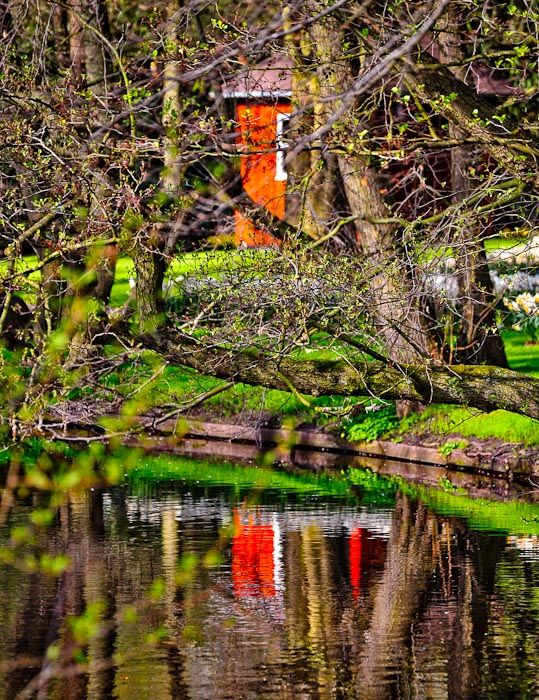Farm house in the woods at Keukenhof