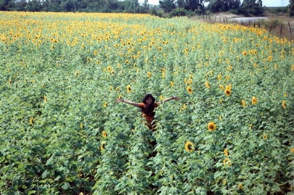 Lipika among the sunflowers!