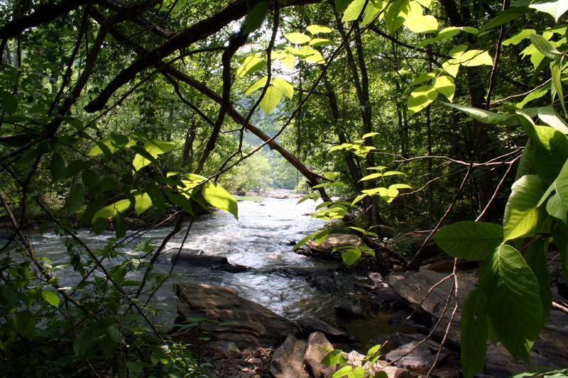 Sweet Water Creek VI