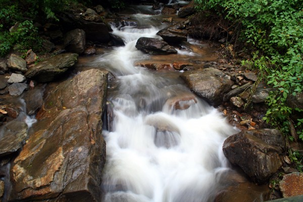 Amicalola Waterfalls VIII