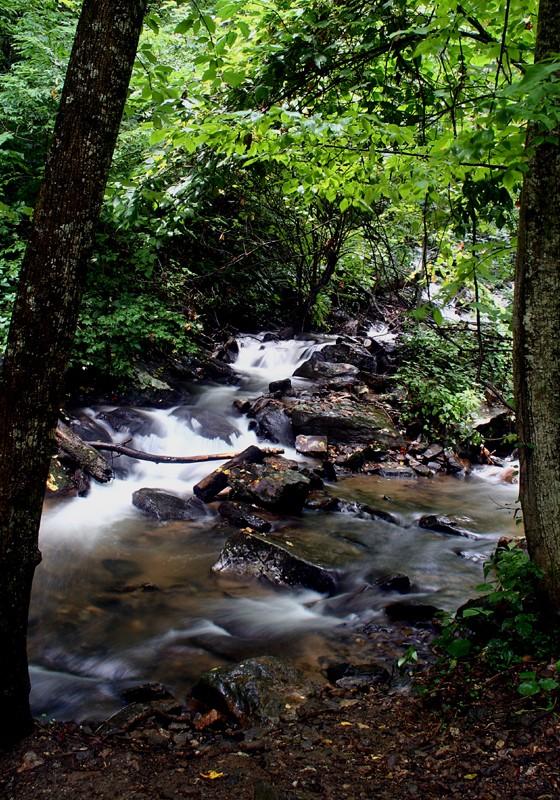 Amicalola Waterfalls V