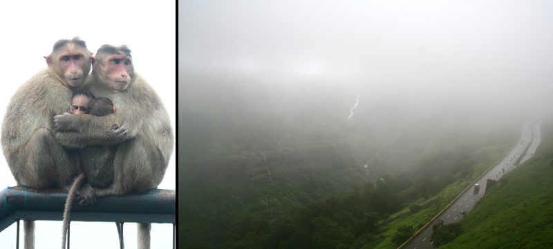 monkey fog khandala lonavla mumbai-pune expressway