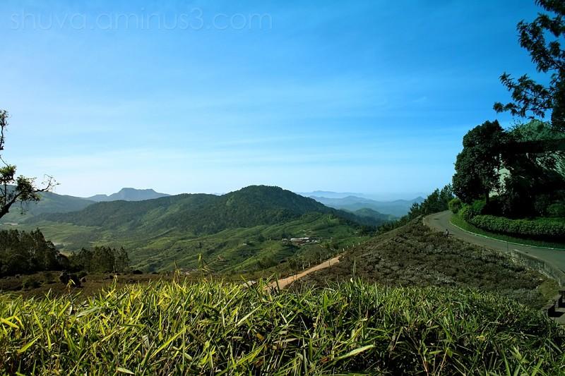 Western Ghats Munnar Kerala Hillstation India