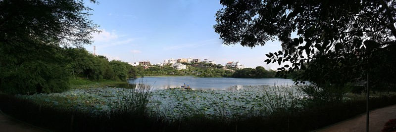 Lotus Pond panaroma Hyderabad park