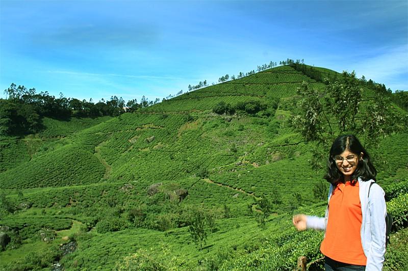 Lipika Munnar tea estates