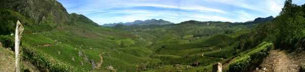Munnar Tea Plantation panorama.