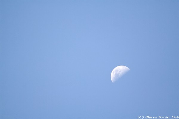 Day time Moon!