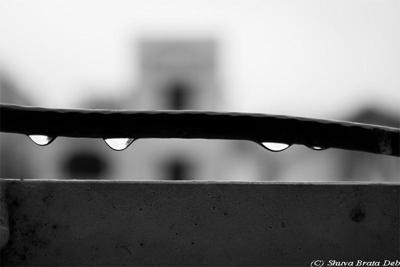 Rain drops!