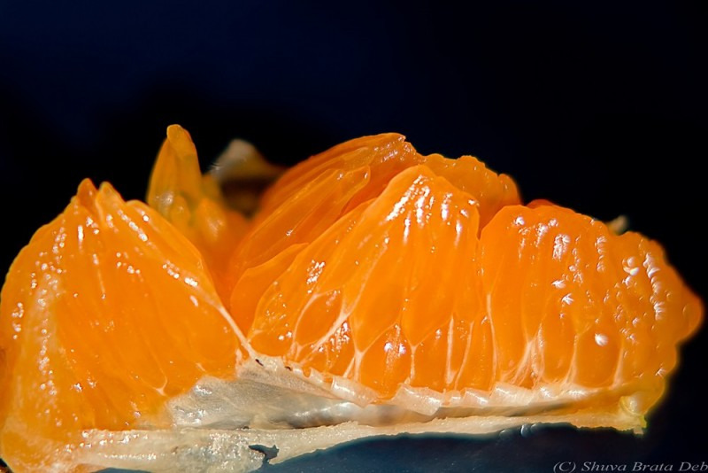 Orange closeup