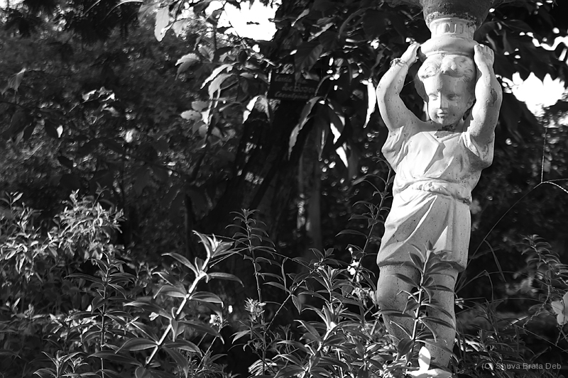 Statue garden park