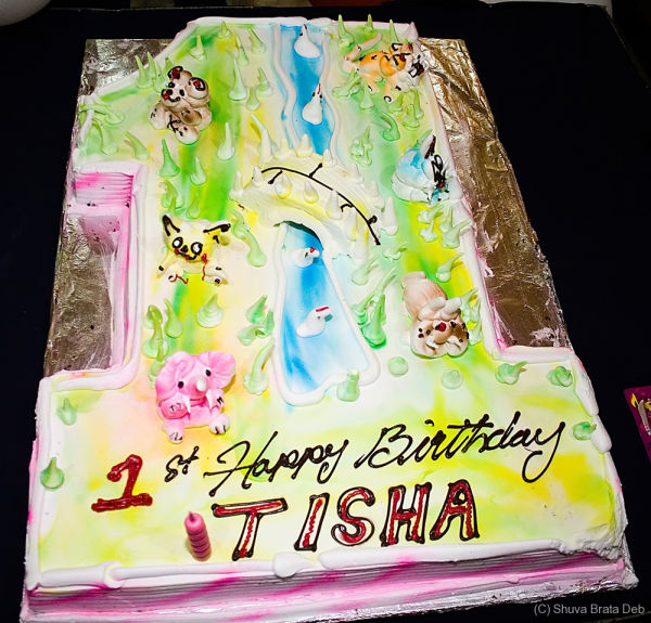 Tisha Birthdayday Party: Cake