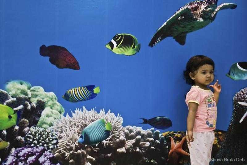 Tisha at the aquarium