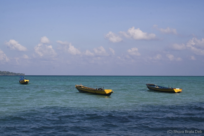 Boats at Havelock