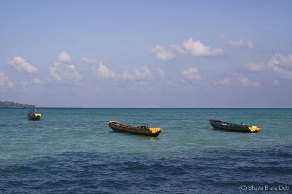 Boats at Havelock