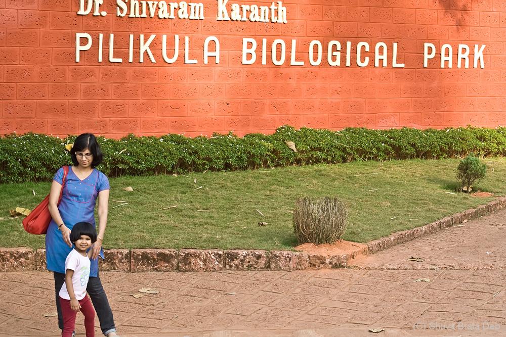 At Pilikula Zoo