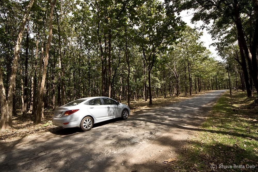 A break on the scenic drive