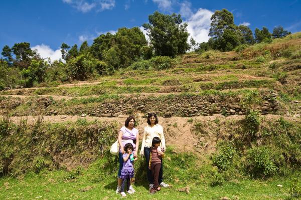 Around the hills farms at Kodai